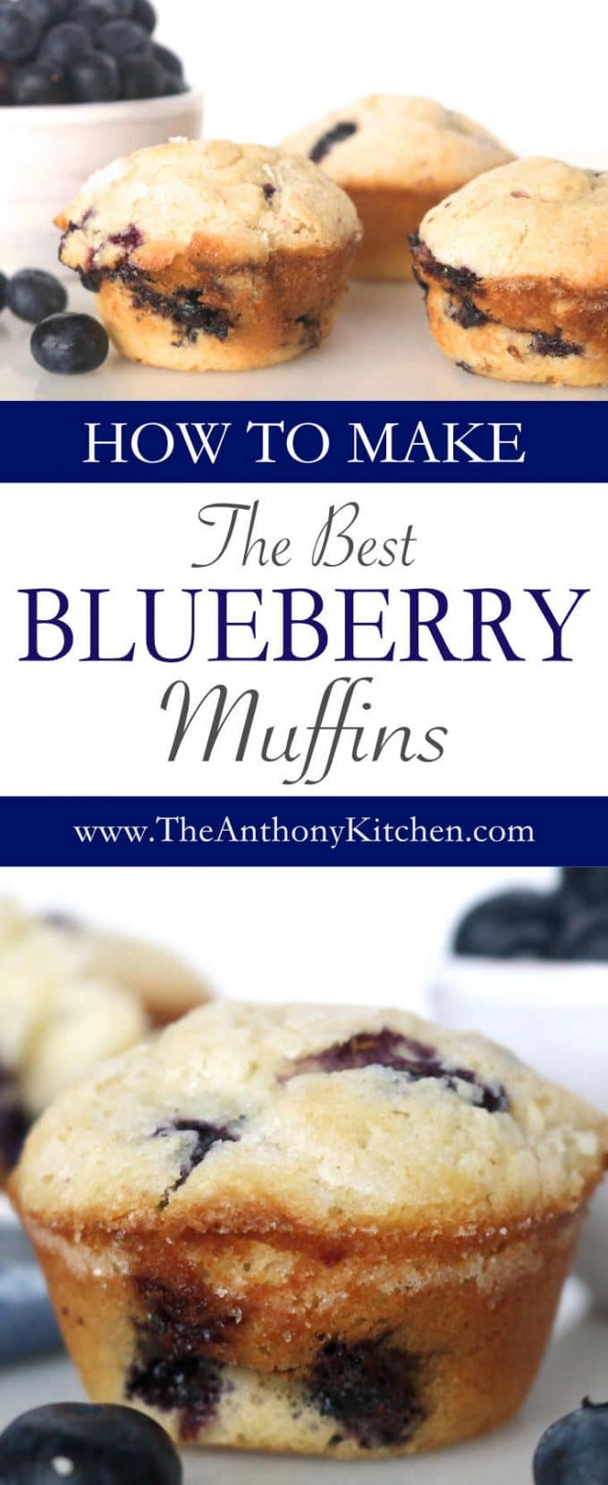 BLUEBERRY MUFFINS FROM SCRATCH
