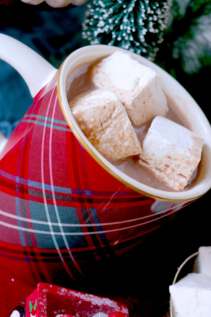 A red plaid coffee mug full of Hot Chocolate and topped with three square marshmallows.  In the background are mini bottlebrush Christmas trees.