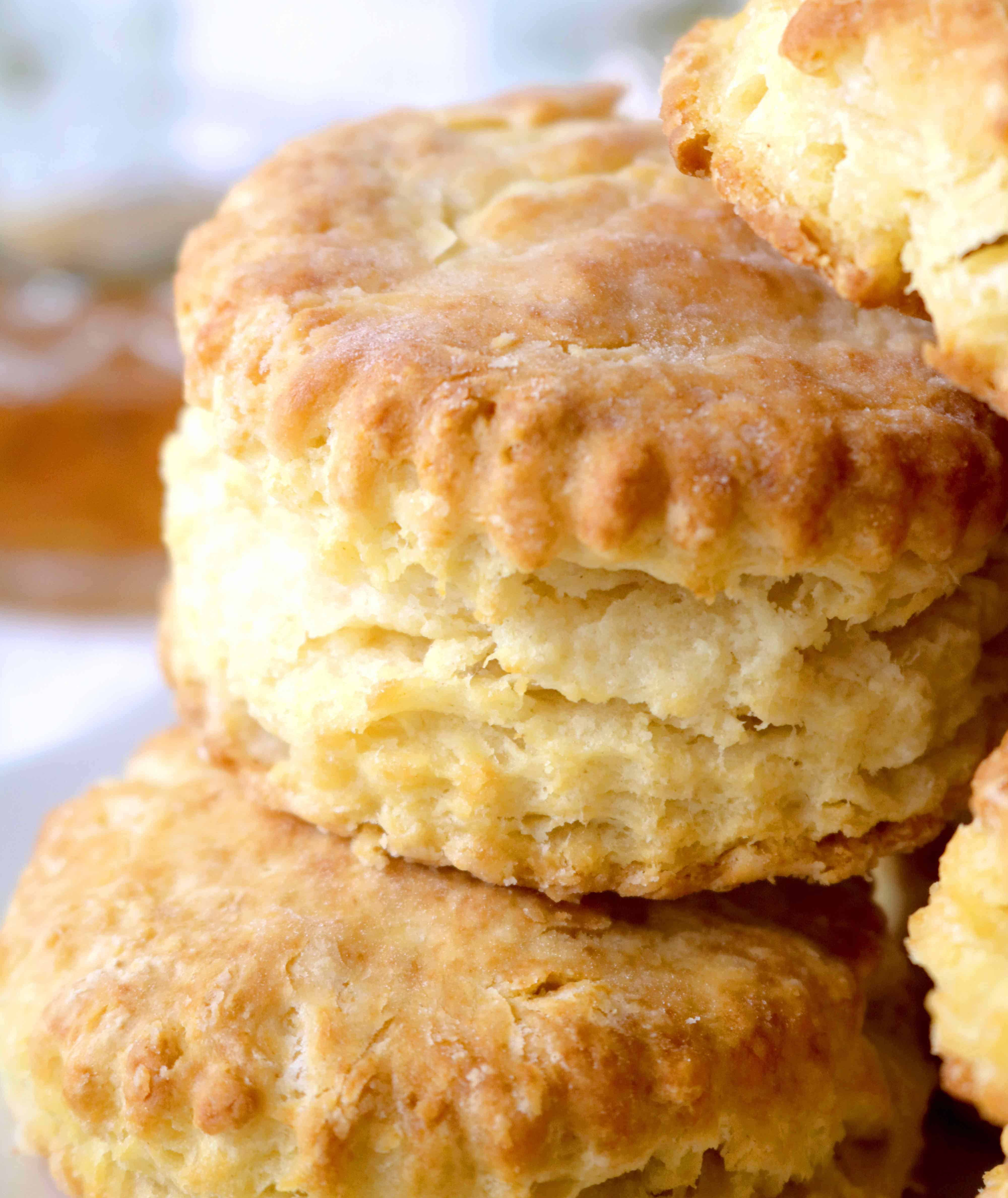Homemade Biscuits Recipe From Scratch