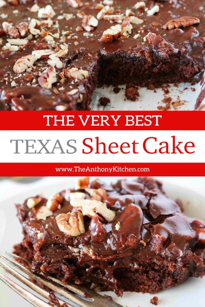 The Best Easy Texas Sheet Cake Recipe with Buttermilk and Fudgy Frosting