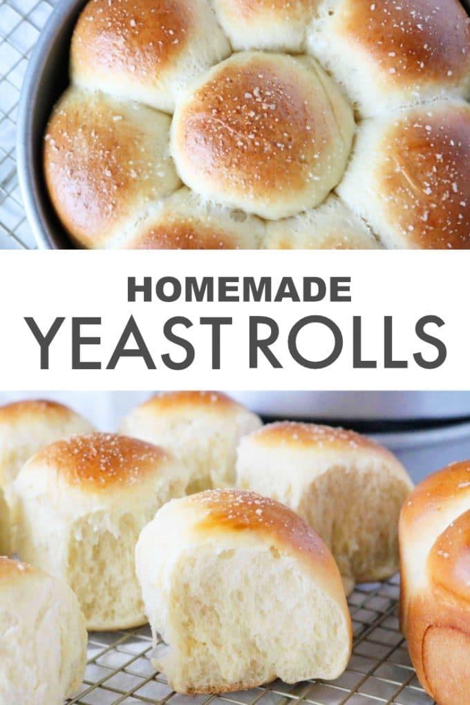 Best Homemade Dinner Rolls Recipe