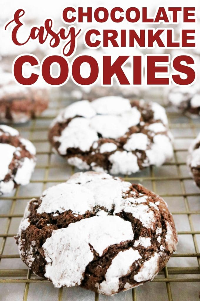 Easy Chewy Chocolate Crinkle Cookies