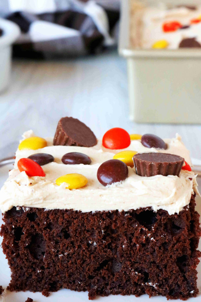 A close up shot of chocolate peanut butter cake with candy on top.